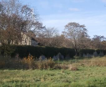 Blick vom Deisterplatz auf Mauer-Fragmente des v. Alten'schen Gartens.