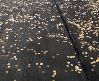 """Liu Guangyun: """"Sternenhimmel auf der Erde"""""""