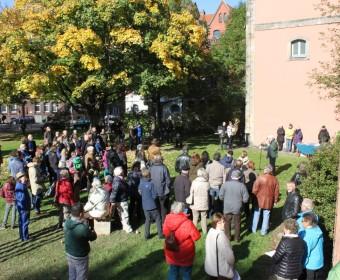 Rahmenprogramm vor der Martinskirche